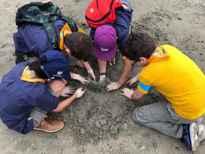 Escoteiros recolhem mais de 300 resíduos na praia de Santos e experiência é publicada em revista científica