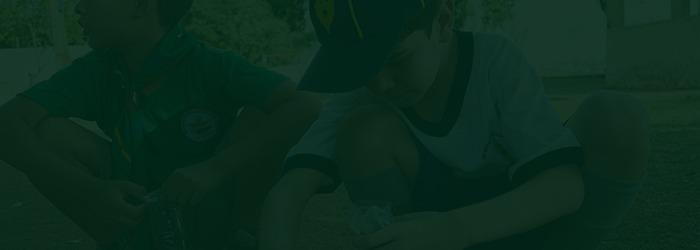 """Fichas de atividade 1000 Hortas + Live """"Alimentação Saudável em Tempos de Crise"""""""